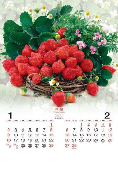 草莓月曆製作-1月份