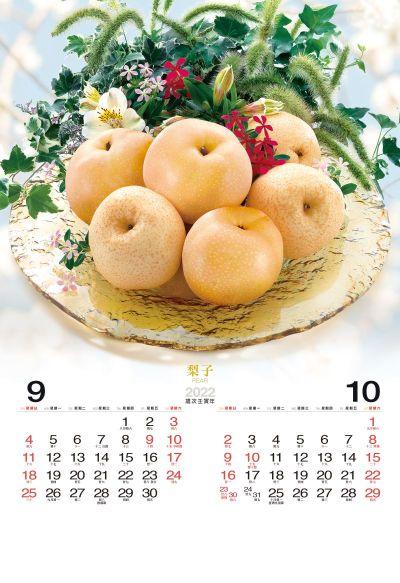哈密瓜月曆製作7-8月份
